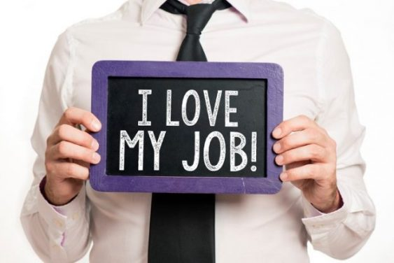 Why Intrapreneurs Love Their Job